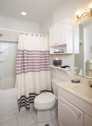 bathroom showing deep Jacuzzi tub and shower with light gray tile and storage area.
