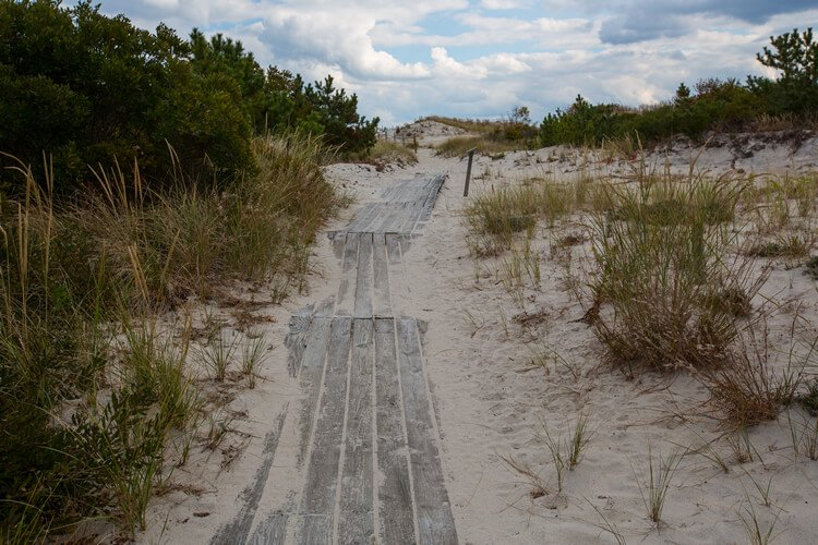 Paved trail through sandy, dune-like beach .. going toward horizon/blue sky and white clouds.